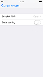 Apple iPhone 5s - iOS 12 - Netwerk - Wijzig netwerkmodus - Stap 5