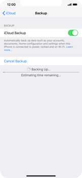 Apple iPhone XR - Data - Create a backup with your account - Step 13