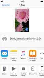 Apple iPhone 6s - iOS 11 - Funciones básicas - Uso de la camára - Paso 10