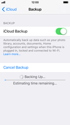 Apple iPhone SE - iOS 11 - Device maintenance - Create a backup of your data - Step 13