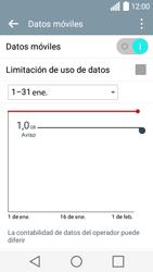 LG Leon - Internet - Ver uso de datos - Paso 5