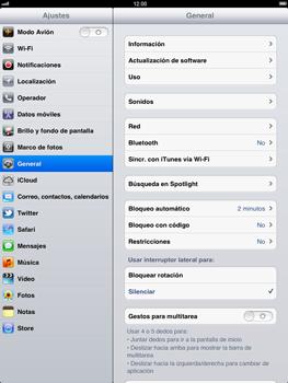 Apple iPad 2 - Internet - Ver uso de datos - Paso 3