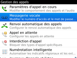 BlackBerry 9900 Bold Touch - Messagerie vocale - Configuration manuelle - Étape 5