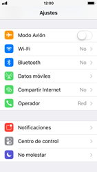 Apple iPhone 5s - iOS 11 - Red - Seleccionar el tipo de red - Paso 3