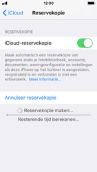 Apple iPhone 5s - iOS 11 - Device maintenance - Back up - Stap 15