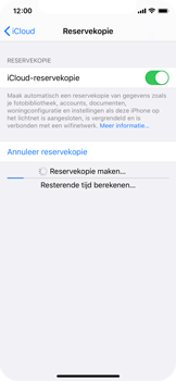 Apple iPhone X - iOS 13 - Data - maak een back-up met je account - Stap 13