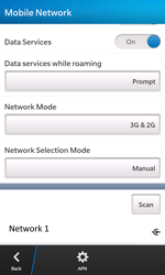BlackBerry Z10 - Network - Usage across the border - Step 11
