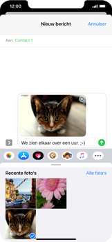 Apple iPhone 11 - MMS - afbeeldingen verzenden - Stap 14