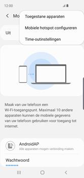 Samsung galaxy-s10e-dual-sim-sm-g970f - WiFi - Mobiele hotspot instellen - Stap 9