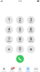 Apple iPhone 7 - iOS 13 - Chamadas - Como bloquear chamadas de um número específico - Etapa 3