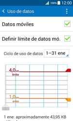 Samsung Galaxy Core Prime - Internet - Ver uso de datos - Paso 11