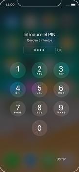 Apple iPhone X - Mensajería - Configurar el equipo para mensajes multimedia - Paso 17