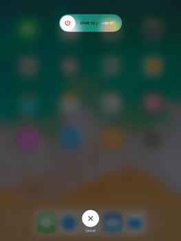 Apple iPad Mini 4 - iOS 11 - Internet - Manual configuration - Step 11