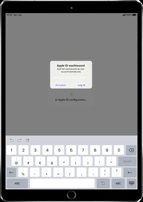 Apple ipad-9-7-inch-6th-generation-model-a1954-ios-12 - Instellingen aanpassen - Hoe gebruik ik de Automatisch inloggen-optie - Stap 13