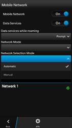 BlackBerry Z30 - Network - Usage across the border - Step 7