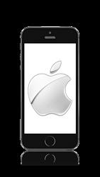 Apple iPhone SE iOS 10 - Internet - Automatic configuration - Step 1