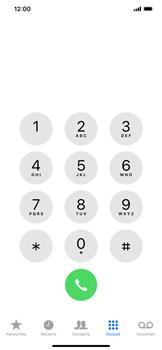Apple iPhone XR - Calling - Block international phone numbers - Step 3