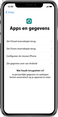 Apple iPhone X - Instellingen aanpassen - Activeer het toestel en herstel jouw iCloud-data - Stap 15