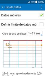 Samsung Galaxy Core Prime - Internet - Ver uso de datos - Paso 5