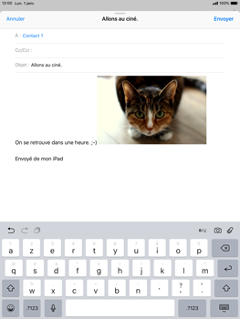 Apple iPad Air iOS 12 - E-mail - envoyer un e-mail - Étape 11