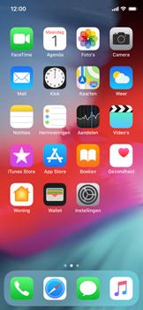 Apple iPhone X - iOS 12 - Bellen - bellen via wifi (VoWifi) - Stap 2