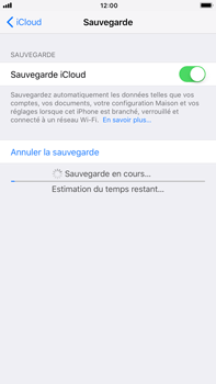 Apple Apple iPhone 6s Plus - iOS 11 - Device maintenance - Back up - Étape 14