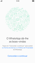 Apple iPhone 6 - iOS 12 - Aplicações - Como configurar o WhatsApp -  7