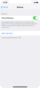 Apple iPhone XS - Data - Create a backup with your account - Step 14