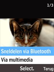 Nokia 215 (Type RM-1111) - Contacten en data - Foto