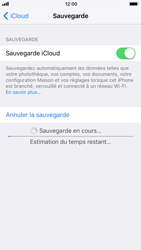 Apple iPhone 6 - iOS 11 - Device maintenance - Back up - Étape 14