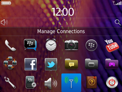 BlackBerry 9360 Curve - Internet - Usage across the border - Step 3