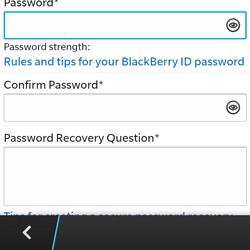 BlackBerry Q5 - Applications - Downloading applications - Step 10