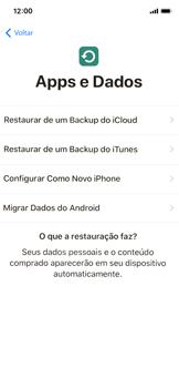 Apple iPhone X - iOS 12 - Primeiros passos - Como ativar seu aparelho - Etapa 14