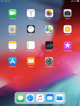 Apple iPad Air iOS 12 - Internet - internetten - Stap 1