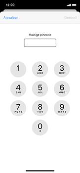 Apple iPhone X - iOS 13 - Beveiliging - pas de pincode voor je simkaart aan - Stap 6
