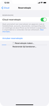 Apple iPhone 11 Pro Max - Data - maak een back-up met je account - Stap 13