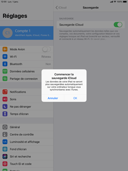 Apple iPad 9.7 (2018) iOS12 - Données - créer une sauvegarde avec votre compte - Étape 11
