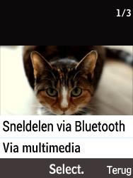Nokia 216 - Contacten en data - Foto