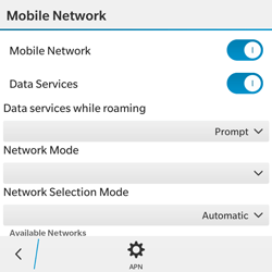 BlackBerry Classic - Network - Usage across the border - Step 6