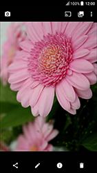 HTC U Play - Photos, vidéos, musique - Prendre une photo - Étape 16