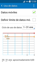 Samsung Galaxy Core Prime - Internet - Ver uso de datos - Paso 8