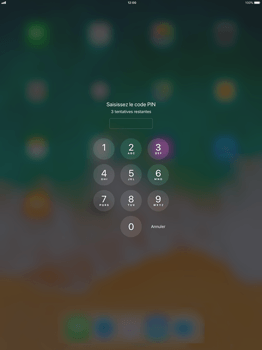 Apple Apple iPad Pro 12.9 - iOS 11 - Internet - Configuration manuelle - Étape 15