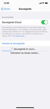 Apple iPhone XS - iOS 13 - Données - créer une sauvegarde avec votre compte - Étape 13