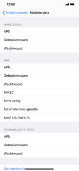 Apple iPhone 11 Pro Max - internet - handmatig instellen - stap 6