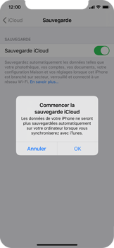 Apple iPhone XS - iOS 13 - Données - créer une sauvegarde avec votre compte - Étape 11