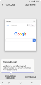Samsung Galaxy Note9 - Internet - Internetten - Stap 15