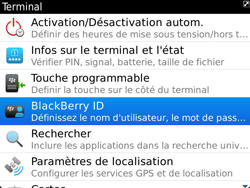 BlackBerry 9900 Bold Touch - BlackBerry activation - BlackBerry ID activation - Étape 5