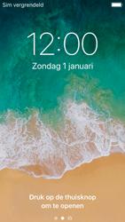 Apple iPhone 5s - iOS 11 - Internet - handmatig instellen - Stap 15