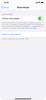Apple iPhone 11 Pro Max - Data - maak een back-up met je account - Stap 14