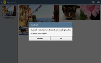 Samsung P5220 Galaxy Tab 3 10-1 LTE - Contacten en data - Foto